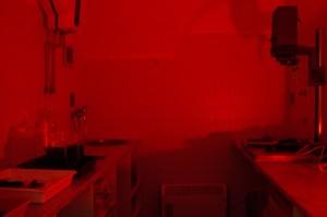 Temná komora